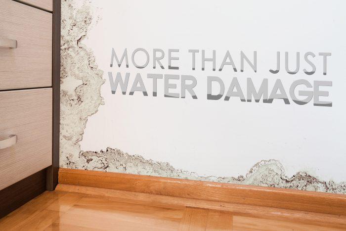 WATER DAMAGE-min